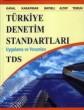 Türkiye Denetim Standartları Uygulama ve Yorumları